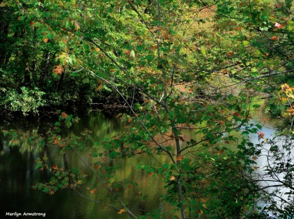 180-Almost-Autumn-Riverside-RI-Mar-091517_120