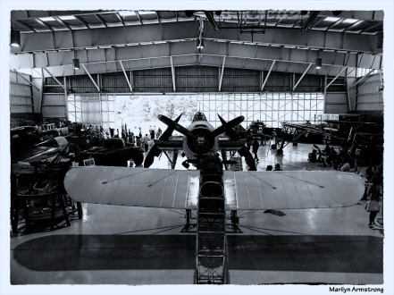 180-BW-Angles-Airplanes-Tuskegee-Airmen-090917_146