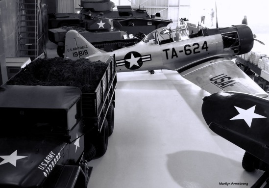 180-BW-Angles-Airplanes-Tuskegee-Airmen-090917_164