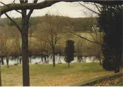 View from the house to the pond and the field behind the pond