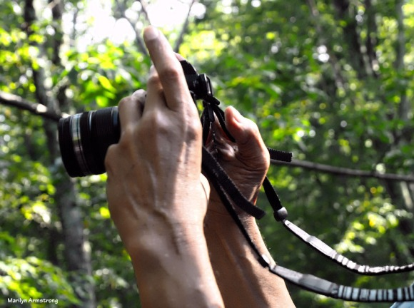 300-hands-garry-photog-092517_006