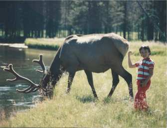 David with a moose in a national park, 1989