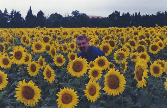 Larry in field of Provencal sunflowers, 1996