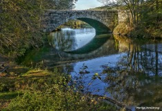 180-Bridge-Canal-Fall-Ma-10122017_025
