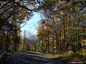 Autumn on Aldrich Street
