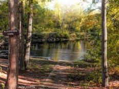 180-Painting-Canal-Fall-Ma-10122017_007