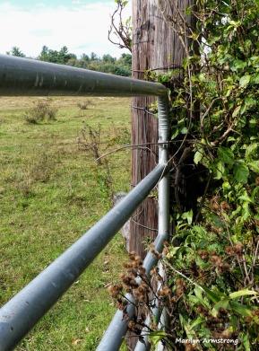 180-Post-2-Farm-Mar-100517_020