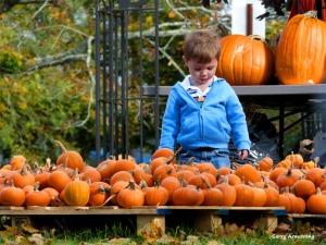 180-Pumpkins-Cape-Cod-GAR10172013_004