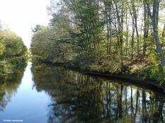 180-Trees-along-Canal-Fall-Ma-10122017_048