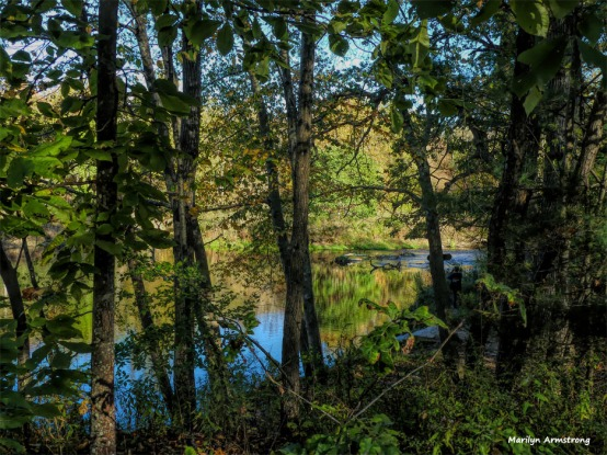 180-Woods-River-Canal-Fall-Ma-10122017_090