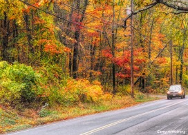 300-autumn-road-rain-foliage-ga-10252017_095