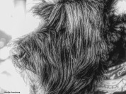 300-bw-painting-bonnie-groomed-101217_008.