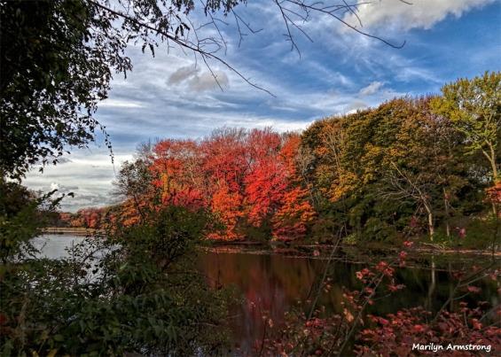 Mumford River
