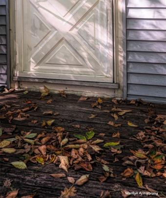 300-leaves-on-deck-1-100117_087