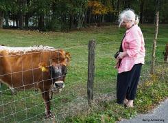 300-mar-with-cow-farm-gar-100517_110