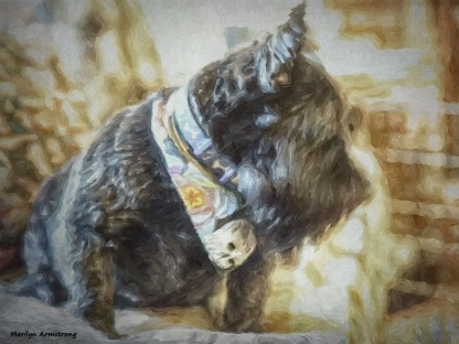 300-painting-more-bonnie-groomed-2-101217_004