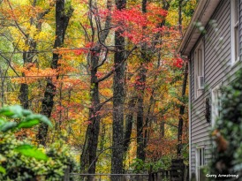 Rainy day in October - Photo Garry Armstrong