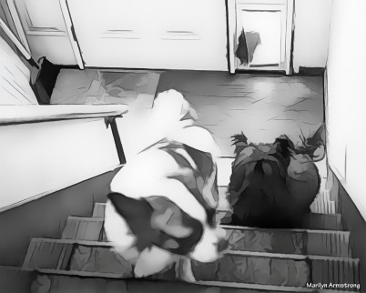 300-bw-drawing-dogs-coming-in-october-100217_003