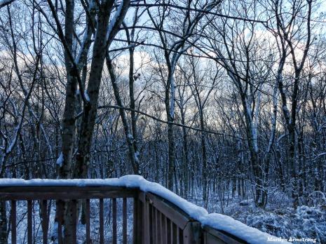 180-Dusk-Deck-First-Snow-12102017_06