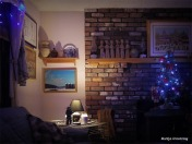 300-Glow-Dogs-Christmas-12162017_006A