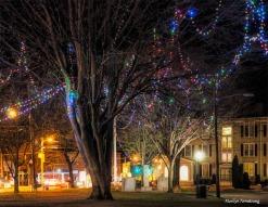 Christmas Common