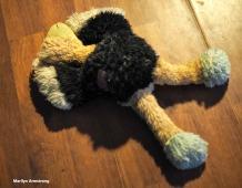 300-survivor-dog-toys-old-new-12222017_003
