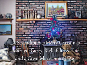 SERENDIPITY-CHRISTMAS-CARD-GRAPHICC-12152017_064