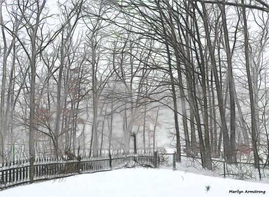 180-Blizzard-Front-Snow-Long-Lens- (16)