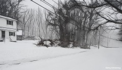 180-bw-snow-road-wires-marker-first-snow-day-gar-01042018_060