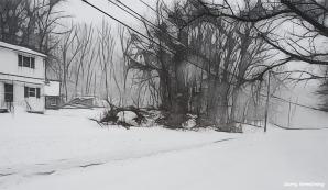 180-bw-snow-road-wires-marker-first-snow-day-gar-01042018_060