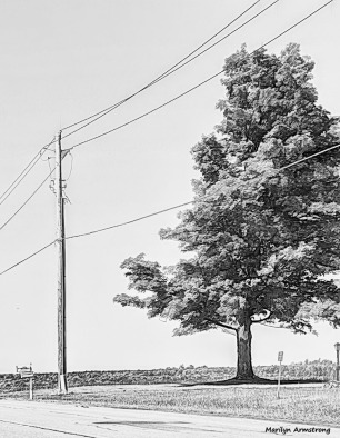 180-bw-wires-drawing-cooperstown-ma_013