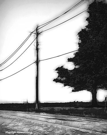 180-marker-wires-bw-cooperstown-ma_014