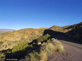 180-Road-Yellow-Mountain-Arizona-Gar-01132016_forgotten_038