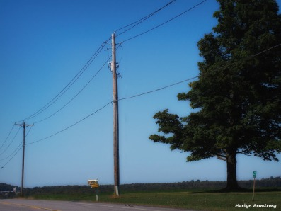 180-wires-road-cooperstown-ma_015