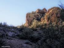 180-Yellow-Mountain-Arizona-Gar-01132016_forgotten_021