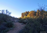 180-Yellow-Mountain-Arizona-Gar-01132016_forgotten_023