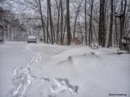 300-footsteps-first-snow-day-gar-01042018_019