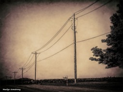 300-wire-etching-monochrome-bw-cooperstown-ma_016