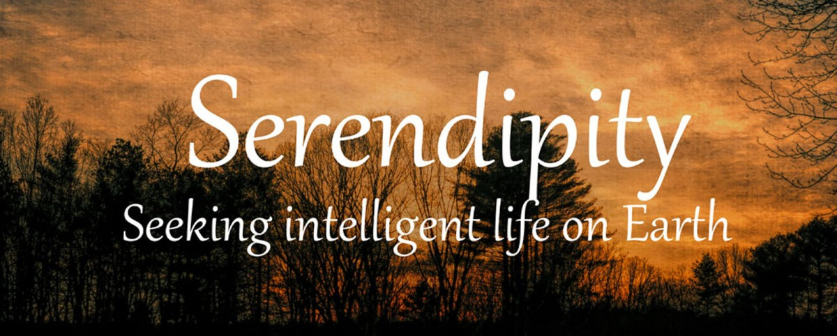 WORD PROMPT: SERENDIPITY ARE US – Marilyn Armstrong