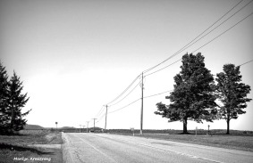 180-bw-road-through-cooperstown-ma_140