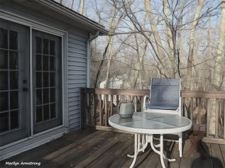 180-Graphic-Deck-Late-Sunshine-Warm-Day-in-February-02212018_120