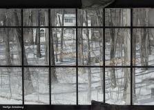 180-Graphic-Snow-Window-Home-02182018_016