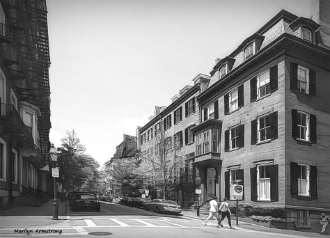 300-BW-Graphics-Beacon-Hill-05062015_001