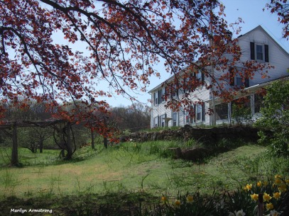 300-graphic-farmhouse-050715_074