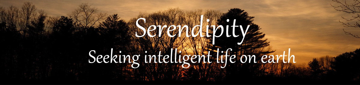 Serendipity – Seeking Intelligent Life