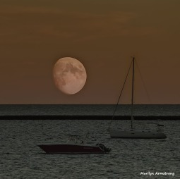 Hunter Moon over Barnstable