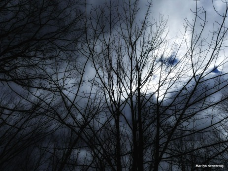180-Glow-Contrast-Storm-Sky-03122018_106