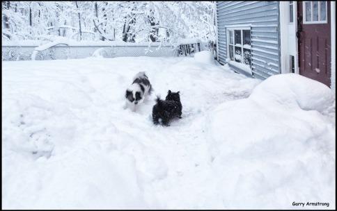 180-graphic-heavy-snow-3-gar-03132018_065
