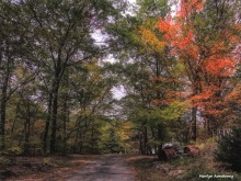 180-Paint-Driveway-Autumn-MA-100915_027