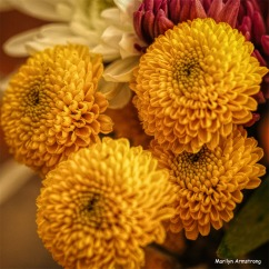 300-square-hdr-birthday-bouquet-03102018_106